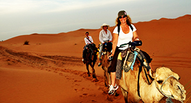 1 night in the desert in berber tent with camel trekking
